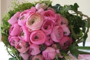 hot-pink-ranunculus-bouquet