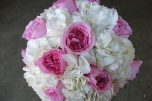 pink-david-austin-roses