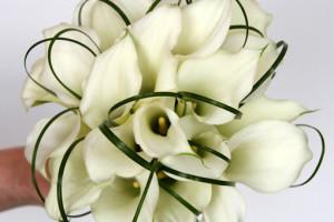 white-calla-lily-bridal-bouquet